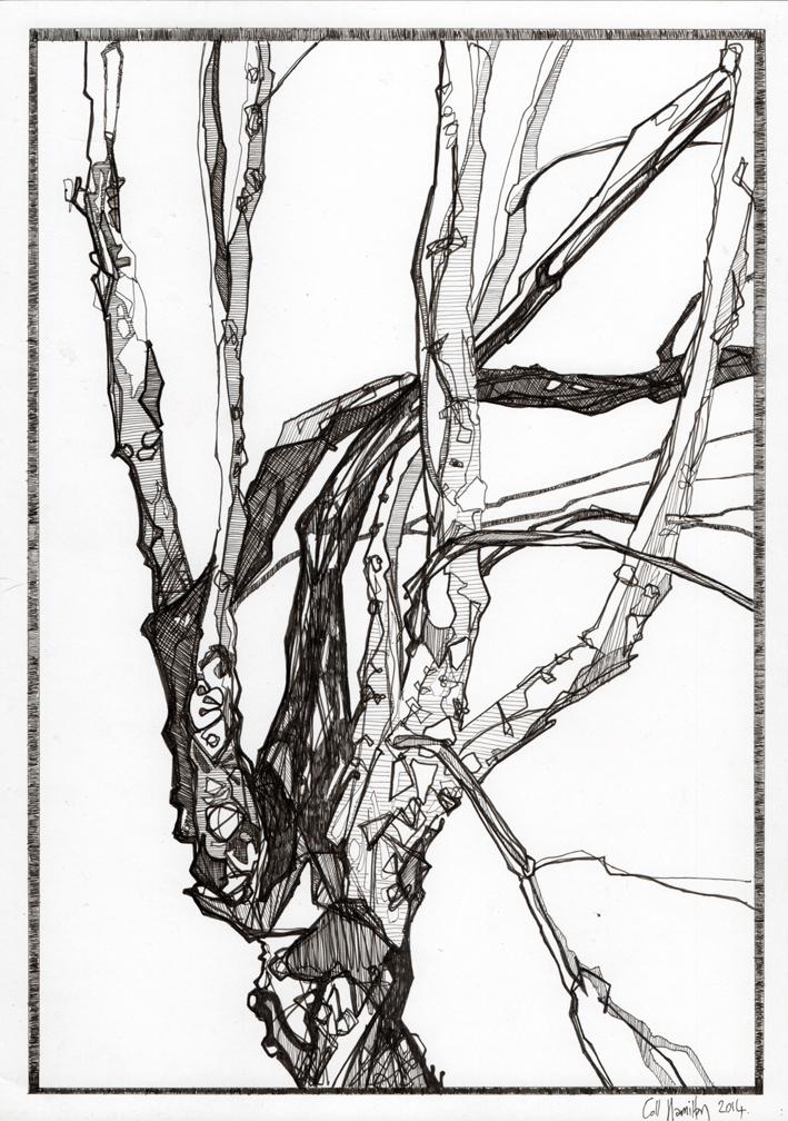 hamilton_drawing3