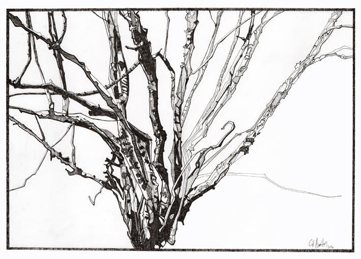 hamilton_drawing4